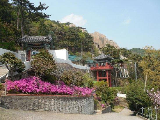 Busan, Corée du Sud : Общий вид храма