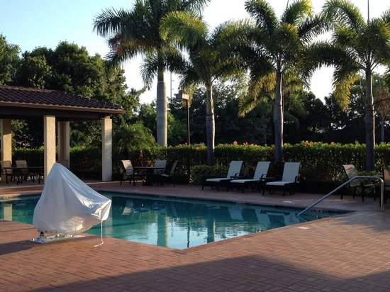 Econo Lodge: Nice clean pool area with lovely tropical trees a bushes