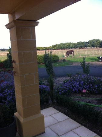 The Barn Accommodation : View from King Spa Suite