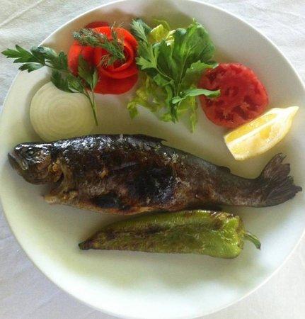 Bodamya Tepe Restaurant : grilled trout