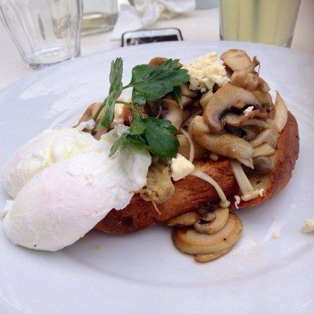 Lily's Pad: Mixed Mushroom Breakfast