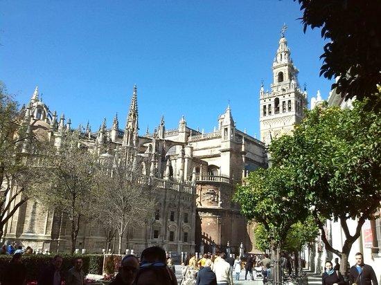 Giralda Tower : giralda y catedral