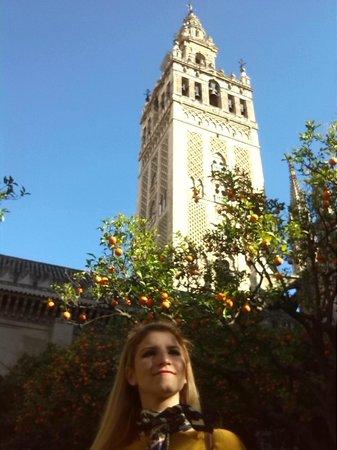 Torre Giralda : Giralda