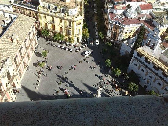 Torre Giralda: vistas desde lo alto giralda