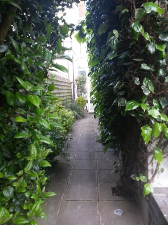 Tinode House: This is just the walkway to the open backyard