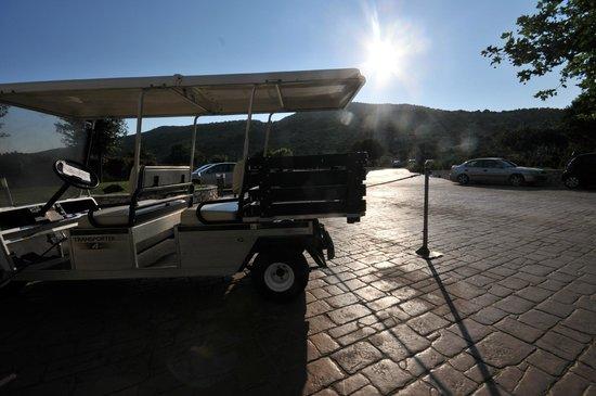 Apostolata Island Resort & Spa: buggy