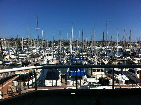 Bay Club Hotel & Marina: Poolside View