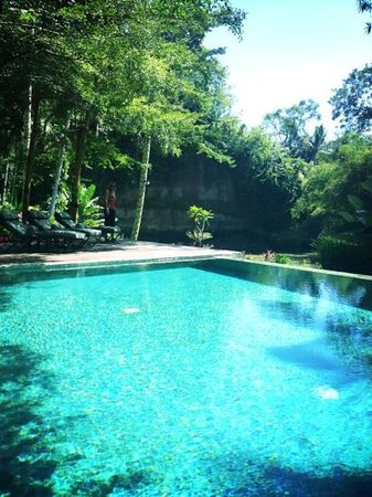 The Samaya Bali Ubud: spa infinity pool overlooking river