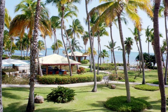 Copamarina Beach Resort & Spa : View from Room