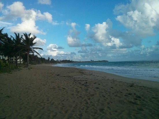 Viva Wyndham Tangerine: Beach