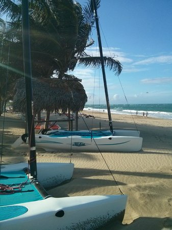 Viva Wyndham Tangerine : Beach