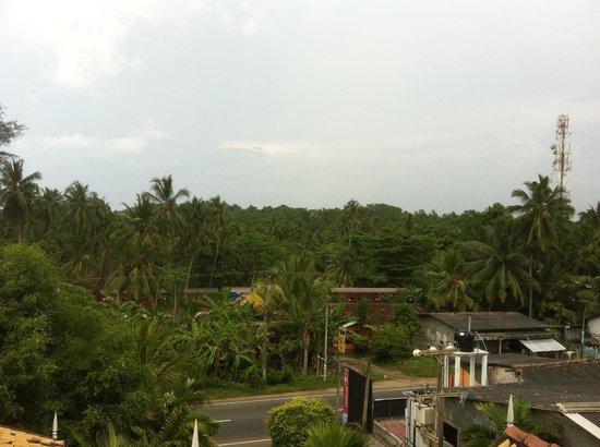 Royal Beach Resort: Вид с крыши отеля