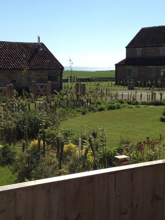 Scalby Lodge: View from back garden