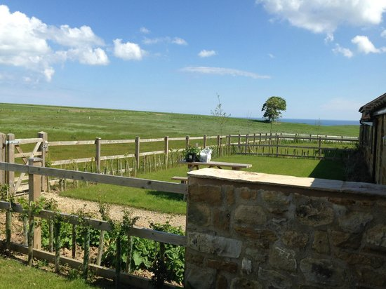 Scalby Lodge: View from front garden