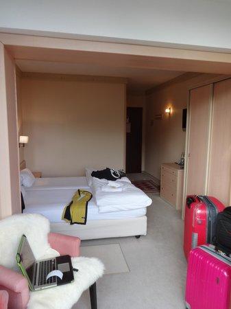Hotel de la Foret: deluxe double room