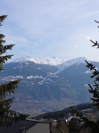 Hotel de la Foret: view