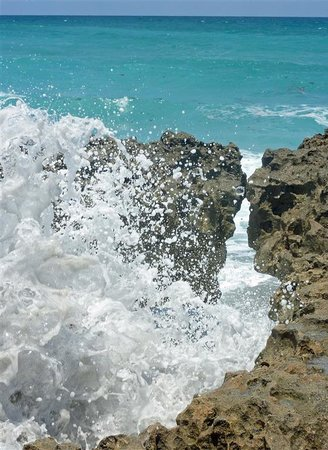 Blowing Rocks Preserve: Waves booming through hole at high tide
