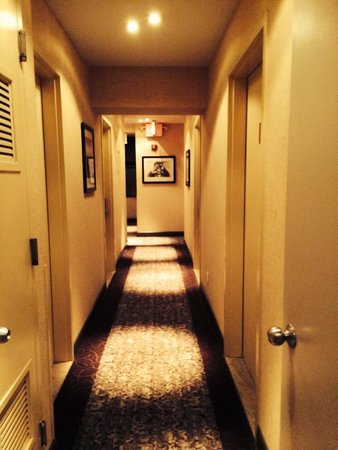 Washington Jefferson Hotel: Hotel hallway