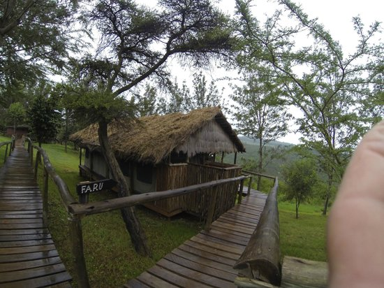Ngorongoro Forest Tented Lodge: notre chambre