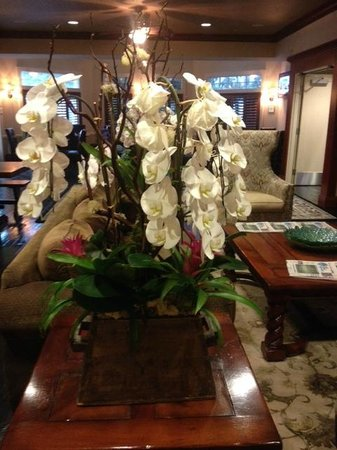 West Inn & Suites Carlsbad: Beautiful Orchids Everywhere!