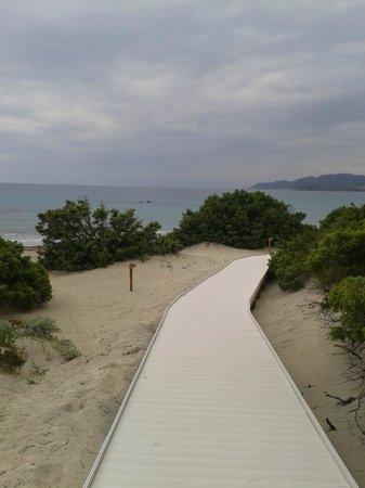 Hotel Fiore di Maggio: Spiaggia in vista