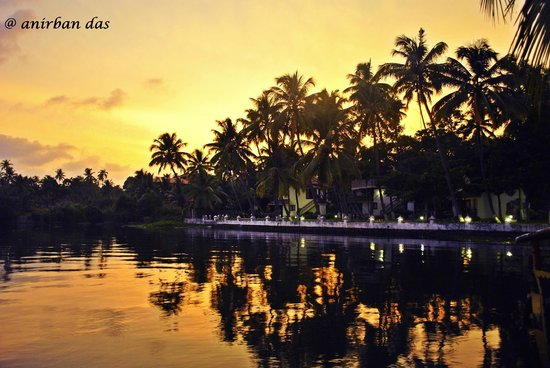 The World Backwaters : The View