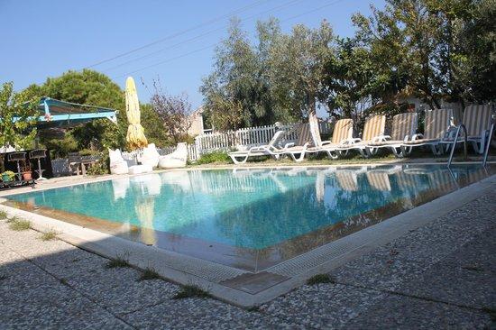 Arya Hotel: Swimming Pool-Havuz