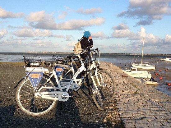Holland Bikes : Découvrez également l'ile de ré à vélo électrique pour garder ses forces.