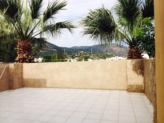 Latania : View