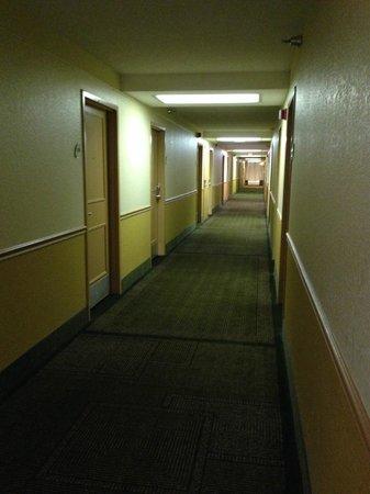 La Quinta Inn & Suites Nashville Airport/Opryland : Hallway