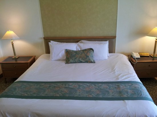Indra Regent Hotel : Bed