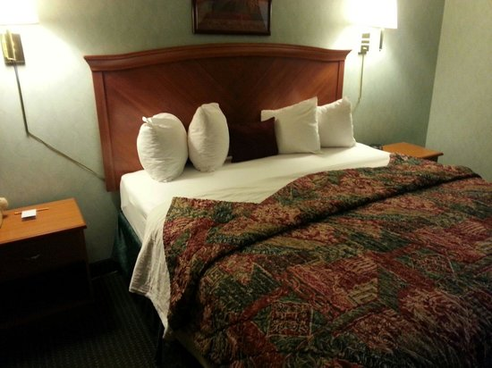 Downtown Inn & Suites: King bed in 215. Mountain side, quite, dont have to take elevator.