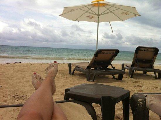 Pure Mareazul: Beachview