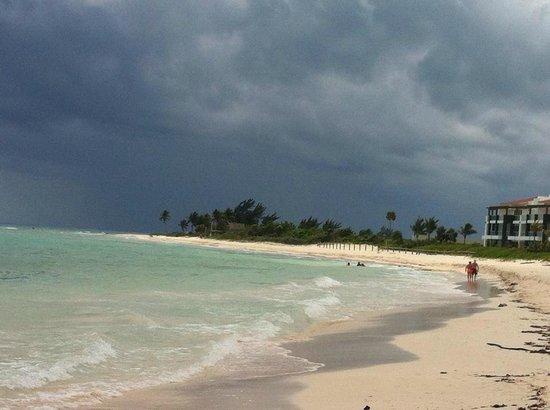 Pure Mareazul: Beachview #2