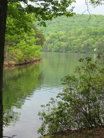 Rocky Gap State Park: View from Lakeside Trail, approaching campground