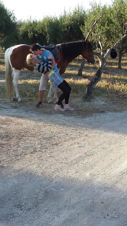 Finikia Horseriding : Honeymooners
