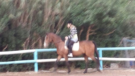 Finikia Horseriding : Anika showing us what she could do...