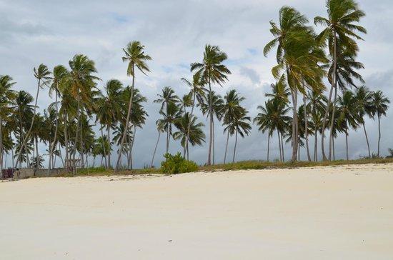 Uroa White Villa: Пляж Уроа
