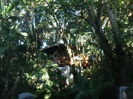 Hotel Costa Verde : Treehouse!