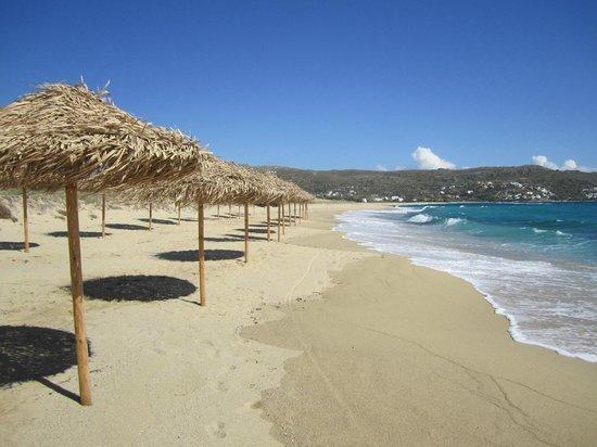 Plaza Beach Hotel: playa