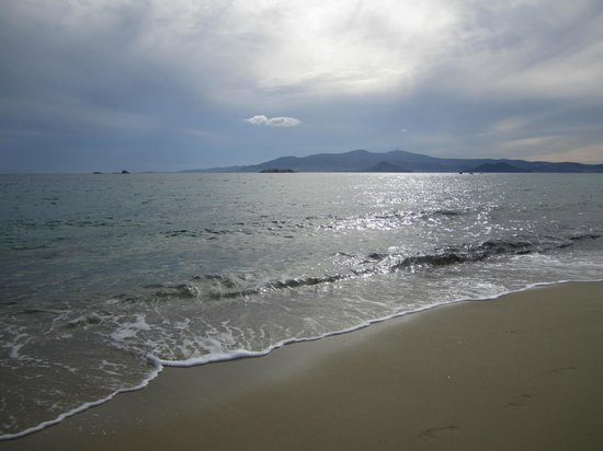 Plaza Beach Hotel: mer