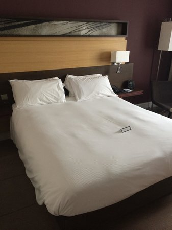 Hilton Sheffield : Such a comfy bed !!