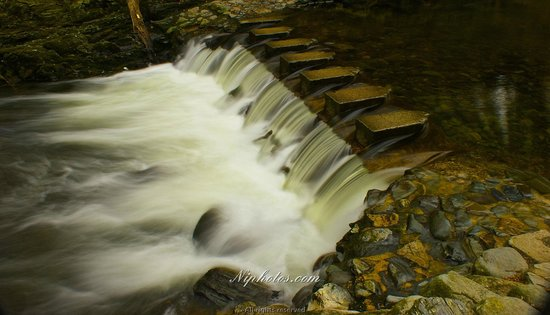 Stepping stones on the Shimna river in Tollymore forest park