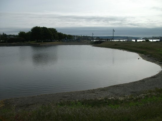Windjammer Park: Lake in park