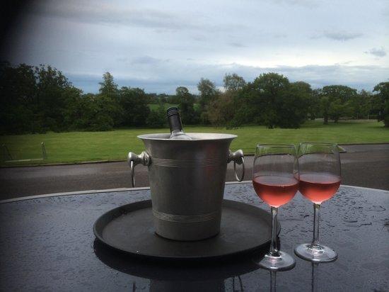 Mercure Bristol North The Grange Hotel: Perfect evening in the garden