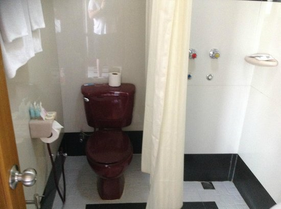 Hotel Grand United (Chinatown): Bathroom same floor- curtain separates it