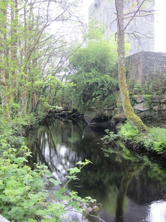 Aughnanure Castle: lovely walk to castle
