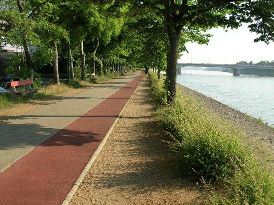 Danubius Grand Hotel Margitsziget: Дорожка для бега и велосипедов