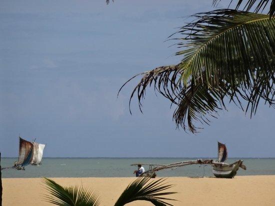 Jetwing Beach: Negombo Beach