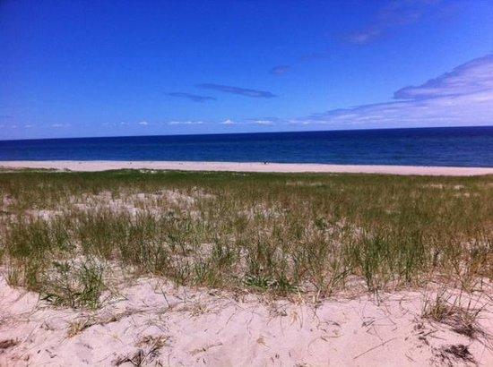 Race Point Beach: Beach looking northwest